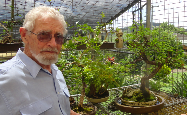 Ron is selling Bonsai Plants to raise money for Dementia Australia (Qld)