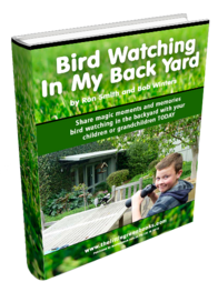 Bird watching in my backyard: activities for people with dementia and their family